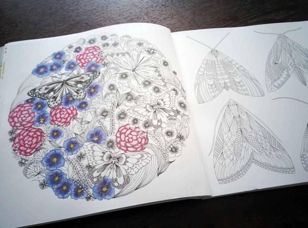 動物たちのぬり絵ブック 蝶 蛾