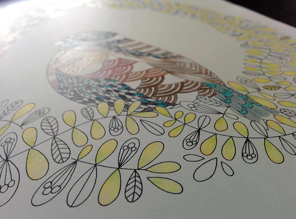 動物たちのぬり絵ブック 鳥 アップ画像