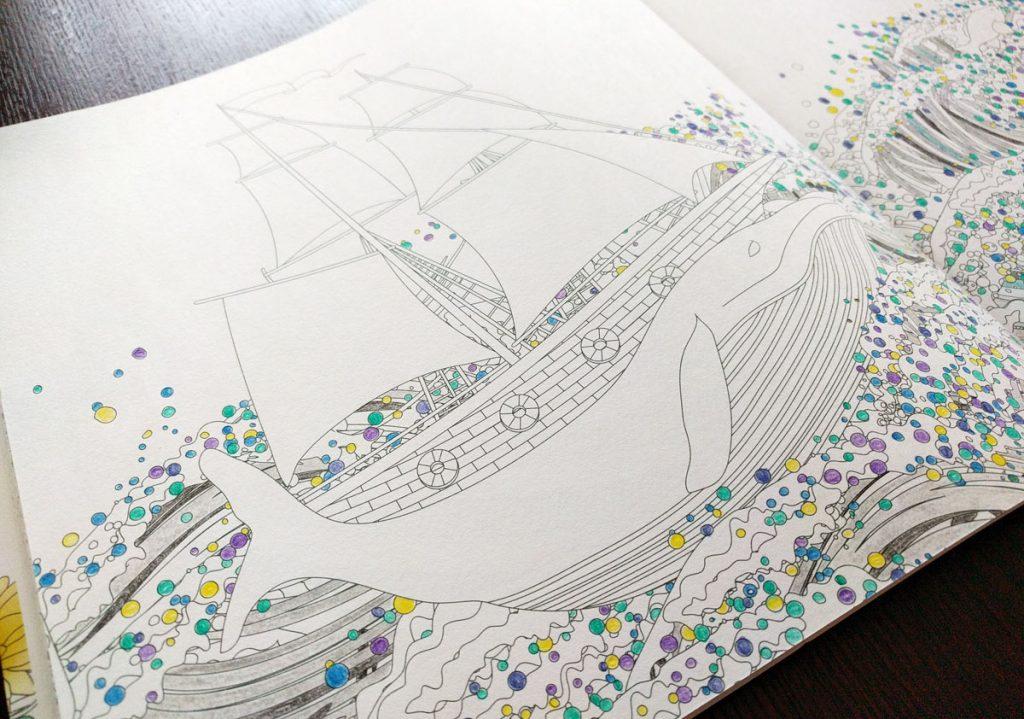 奇跡の鳥の旅 鯨